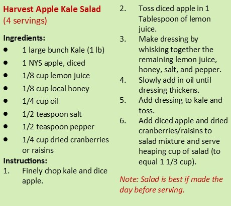 Harvest Apple Kale Salad Recipe!